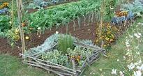 Le jardin écologique