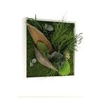Tableau végétal CARRE 35x35 - FLOWERBOX  livraison garantie