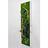 Tableau Végétal Stabilisé PANORAMIQUE 20x70 - FLOWERBOX verifier le produit à la livraison