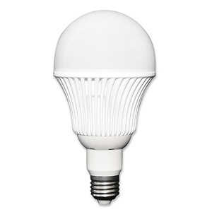 Ampoule LED 12-24 V 12W E27 éclairage naturel - STECA