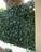 Plaque murale feuillage effet lierre 3m2 - JET7GARDEN