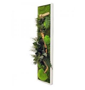 Tableau Végétal Stabilisé PANORAMIQUE Large 115x25 - FLOWERBOX mousse sipmle