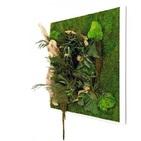 Tableau végétal CARRE XL 80x80 - FLOWERBOX