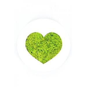 Tableau végétal Micro Picto MAGNET Coeur diam 10cm - FLOWERBOX
