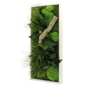 Tableau Végétal Stabilisé RECTANGLE Small 25x57 - FLOWERBOX