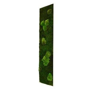 Tableau végétal mousse stabilisé BASIC - Pano L 115x25 - NATURALYS verifier le produit à la livraison