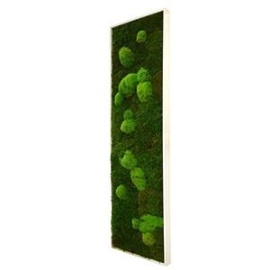 Tableau végétal mousse stabilisé BASIC - Pano XL 40x140 - NATURALYS verifier le produit à la livraison