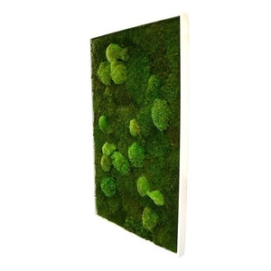 Tableau végétal mousse stabilisé BASIC - Rectangle XL 60x100 - NATURALYS