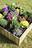 Carré potager VERTIKAL 9 bacs couleur